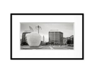 #16060507, La Mela Reintegrata di M.Pistoletto, Milano, 2016, image 20x40 cm, frame 35x55 cm